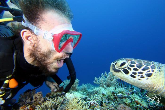 islas gili mi aventura viajando (1)