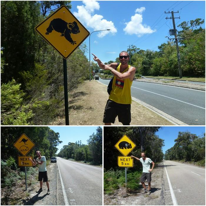 australia-y-nueva-zelanda-a-dedo-autostop-mi-aventura-viajando-4