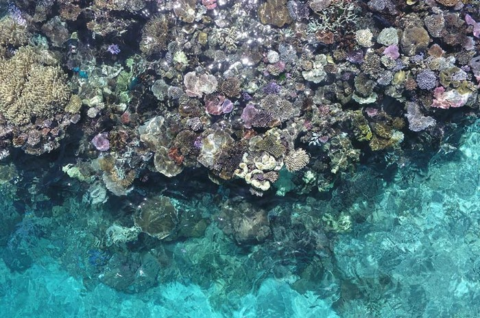 gran-barrera-coral-australia-mi-aventura-viajando-10
