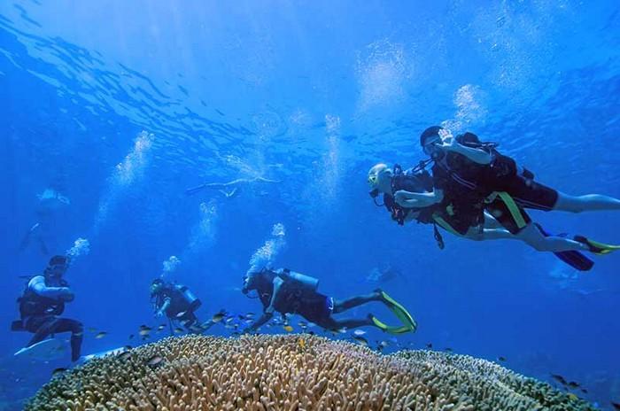gran-barrera-coral-australia-mi-aventura-viajando-11