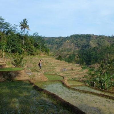 Jepara en Indonesia: Allá donde el turista todavía no ha llegado
