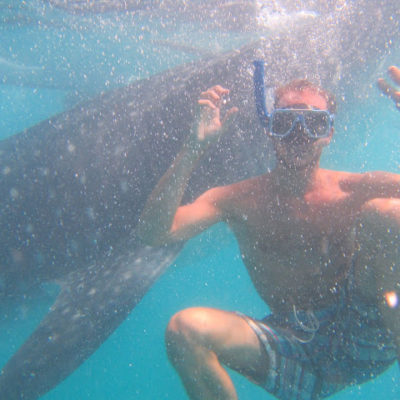 Oslob. Nadando con el tiburón ballena. ¡Impresionante! Pero, ¿a qué precio?