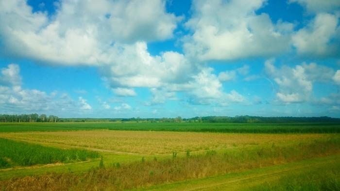 blog-daintree-cairns-norte-queensland-mi-aventura-viajando-22