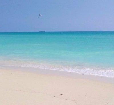 Miami 'low cost': 9 Planes baratos para hacer en 2 o 3 días