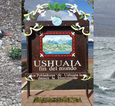 Ushuaia. Con pingüinos y ballenas en el fin del mundo (literalmente)